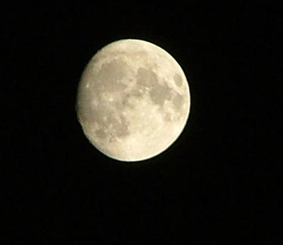 Ailey Moon