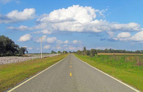 Road CottonEM SX30_5199