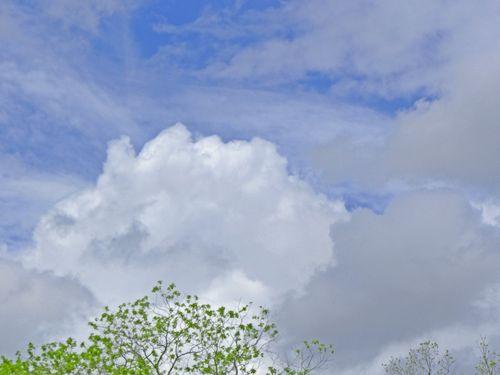 CloudsEM3SX230April_0627