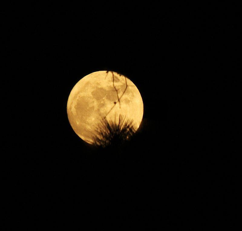 Moon2Dec16T2iNorma_0129